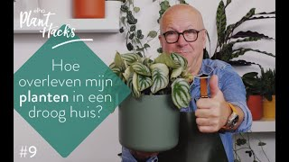 elho Plant hacks #9 Luchtvochtigheid