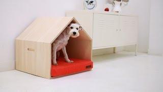 Как сделать домик для собаки?🐶