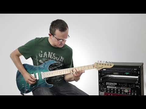 Joe Satriani - Tears in the Rain [Cover by Faruk Aydın Toksoz]