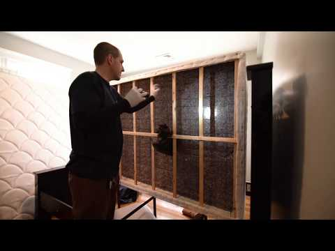 Boston Bed Bug Removal Experts | B&B Pest Control
