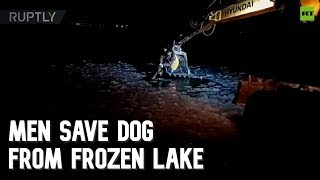 Construction workers save dog from frozen lake in Russia