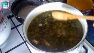 Рецепт зеленого борща с щавелем