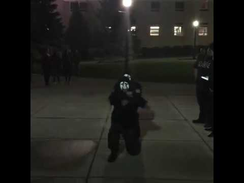 NIU LAMBDAS: DELTA LINE Coming Out Show (Spring 16)