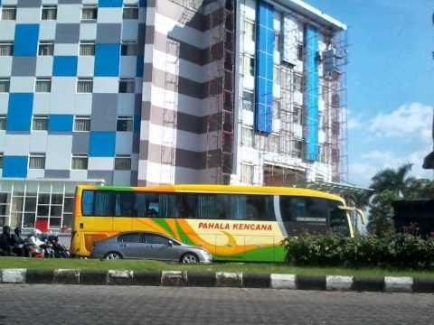 Buslovers Kumpulan Foto Bus