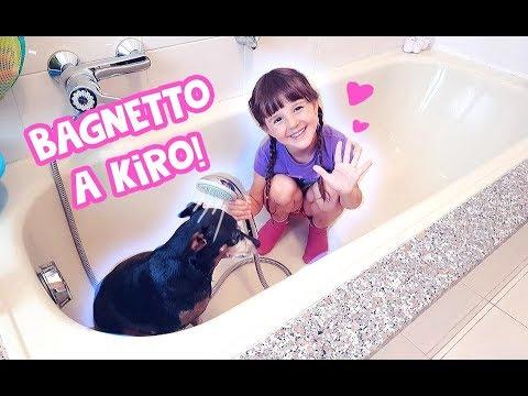 Download 🐶💦Facciamo il bagnetto a Kiro!! 💦🐶