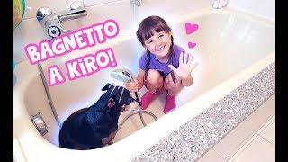 🐶💦Facciamo il bagnetto a Kiro!! 💦🐶 thumbnail