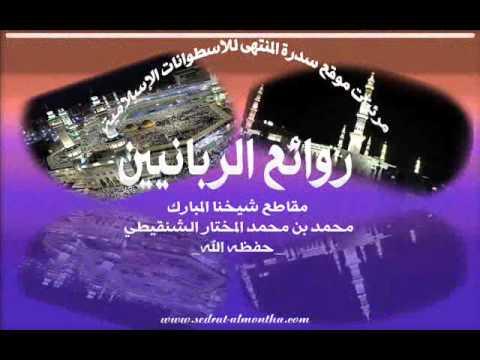 لعن الله من خبَّب امرأة على زوجها-الشيخ الشنقيطي