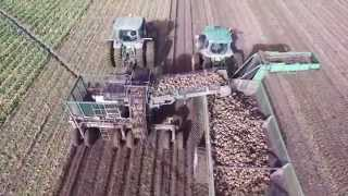 Sugar Beet Harvest 2015