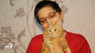 Отношение к кошкам. Что говорится об этом в Исламе?