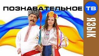 Как сделали украинские фамилии (Артём Войтенков)