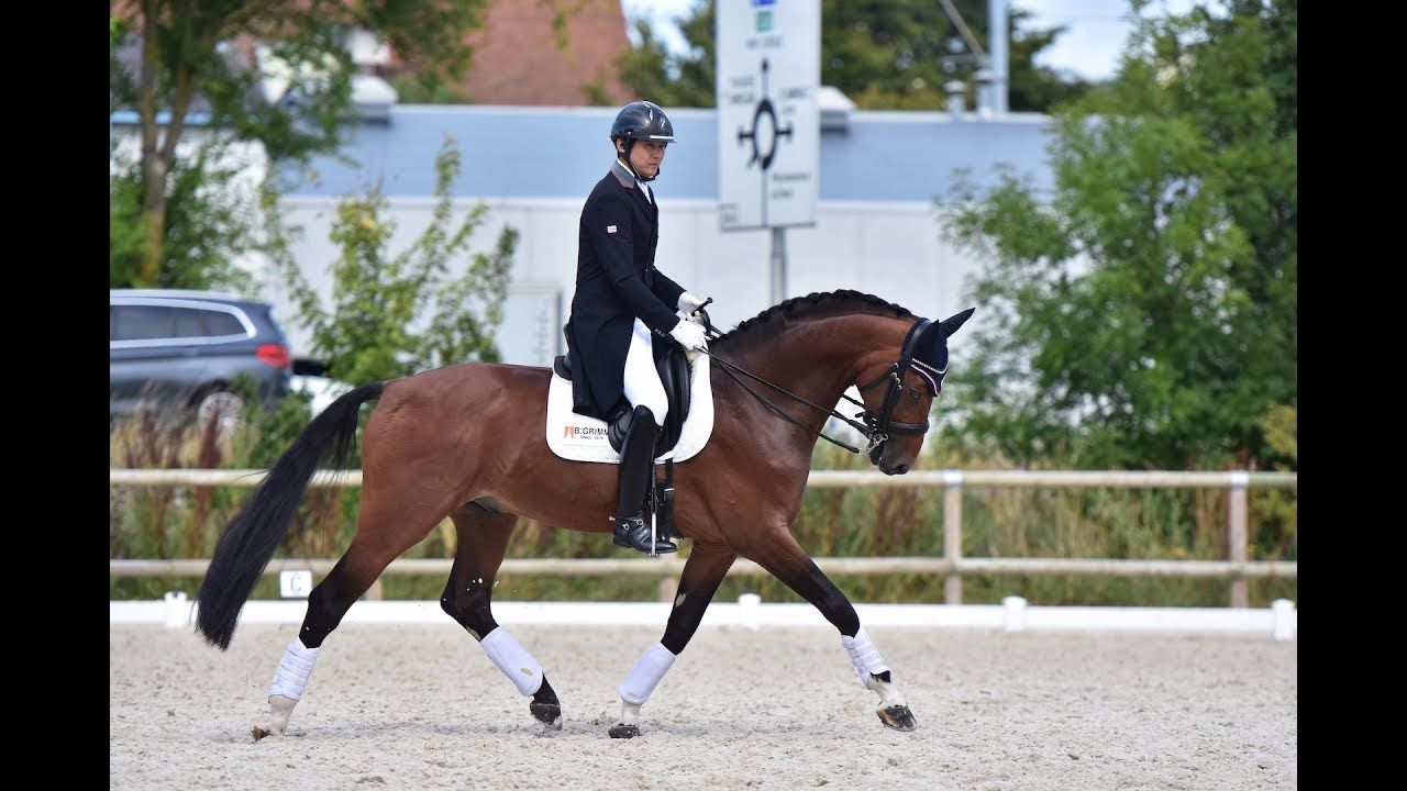 Chalermcharn Yotviriyapanit & Best of Nymphenburg_CDI 3* Deauville 2017_Prix St. Georges 67.026%