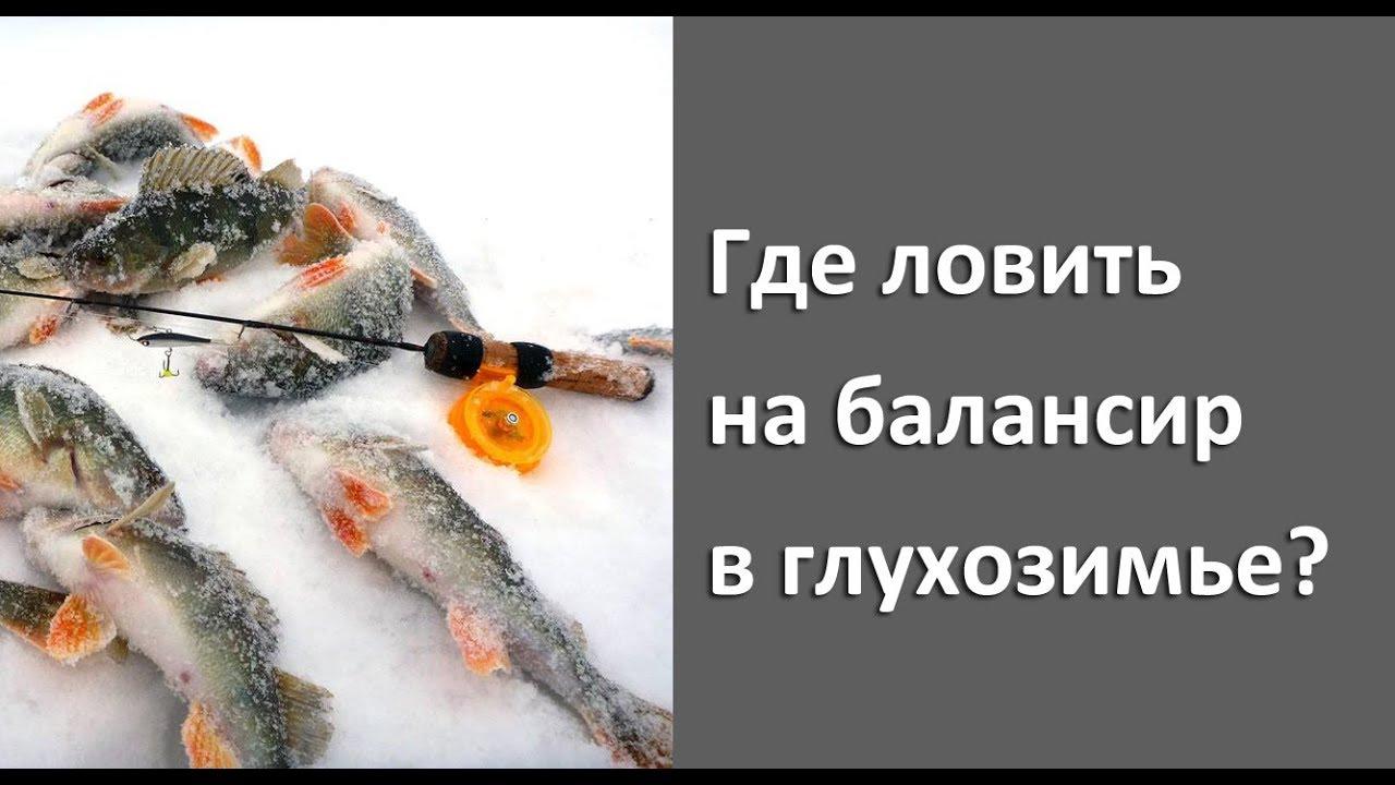 Где ловить в глухозимье на балансир? Зимняя рыбалка на нижней Волге!