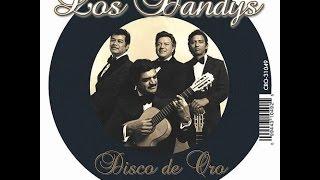 Karaoke- Los Dandys- Como Un Duende