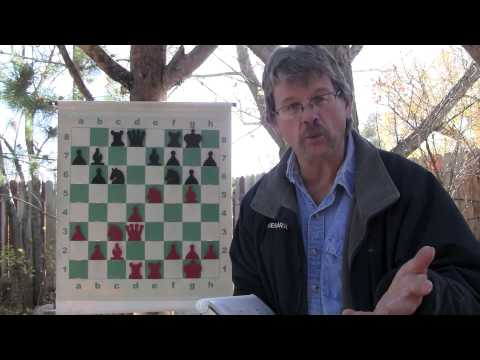 Chess: Learning about the Pawns is FUN, EASY and Important to Improve Our Game