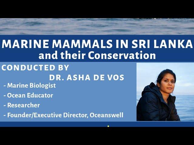 Marine Mammals in Sri Lanka and Their Conservation