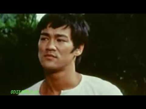 Bruce Lee Fine Let's Go 2017