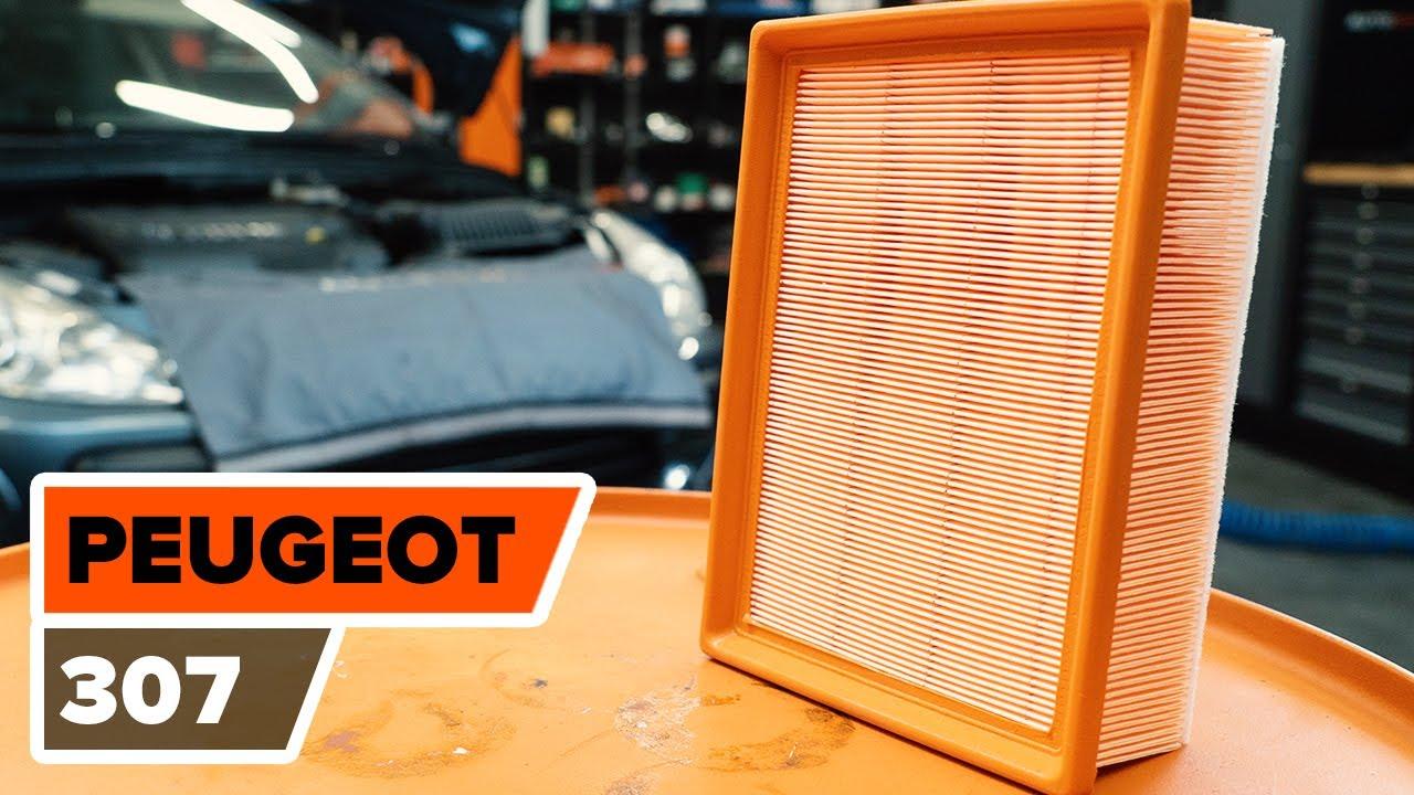 comment remplacer des filtre  air sur une peugeot
