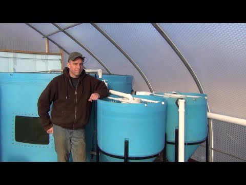 Big Aquaponic Greenhouse – Part 13 – Radial Flow Settler
