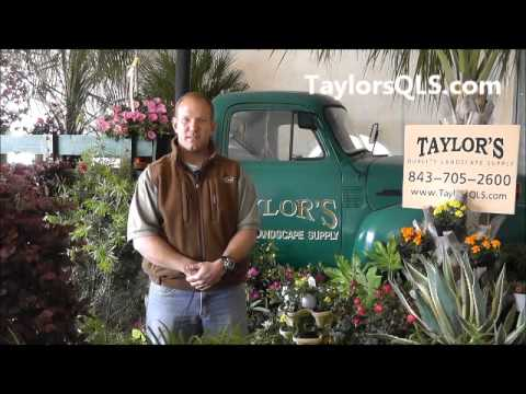 Welcome To Taylor's Quality Landscape Supply From Gerrick Taylor - Welcome To Taylor's Quality Landscape Supply From Gerrick Taylor