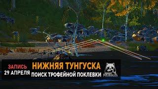 Русская Рыбалка 4 — Поиски новых трофеев на реке Нижняя Тунгуска.