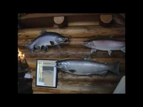 Aluminum Chambered Fishing Boats