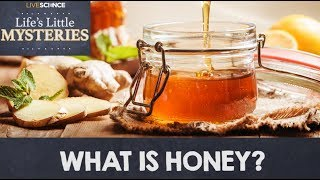 What is Honey?