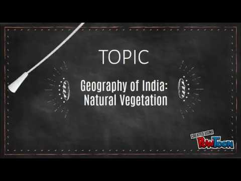 Geography of India - Natural Vegetation