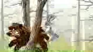Порно мультфильм про медведя