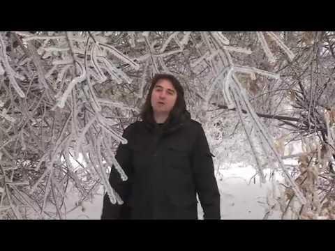 видео: Станислав Бартенев - Мои дорогие