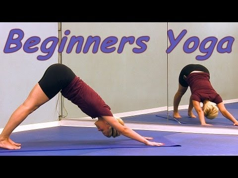 yoga for beginners sun salutation how to video full body