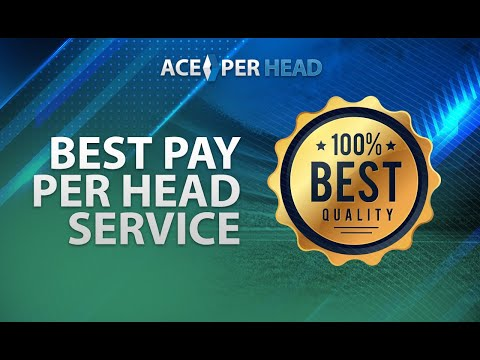 Choosing the Best Per Head Service - Start a Bookie Business Today!