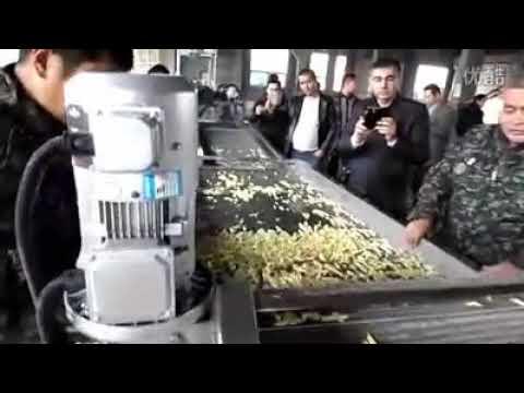 Automatic Potato French Fries Machine Production Line