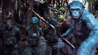 phim hay nhất mọi thời đại  -  Đại Chiến Hành Tinh Khỉ Phần 3 - Phim Bom tấn