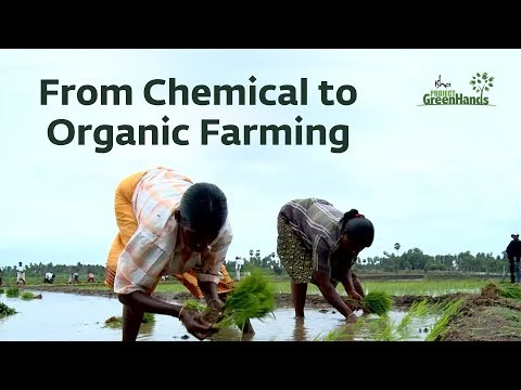 From Chemical to Organic Farming - Isha Agro Movement | Project GreenHands
