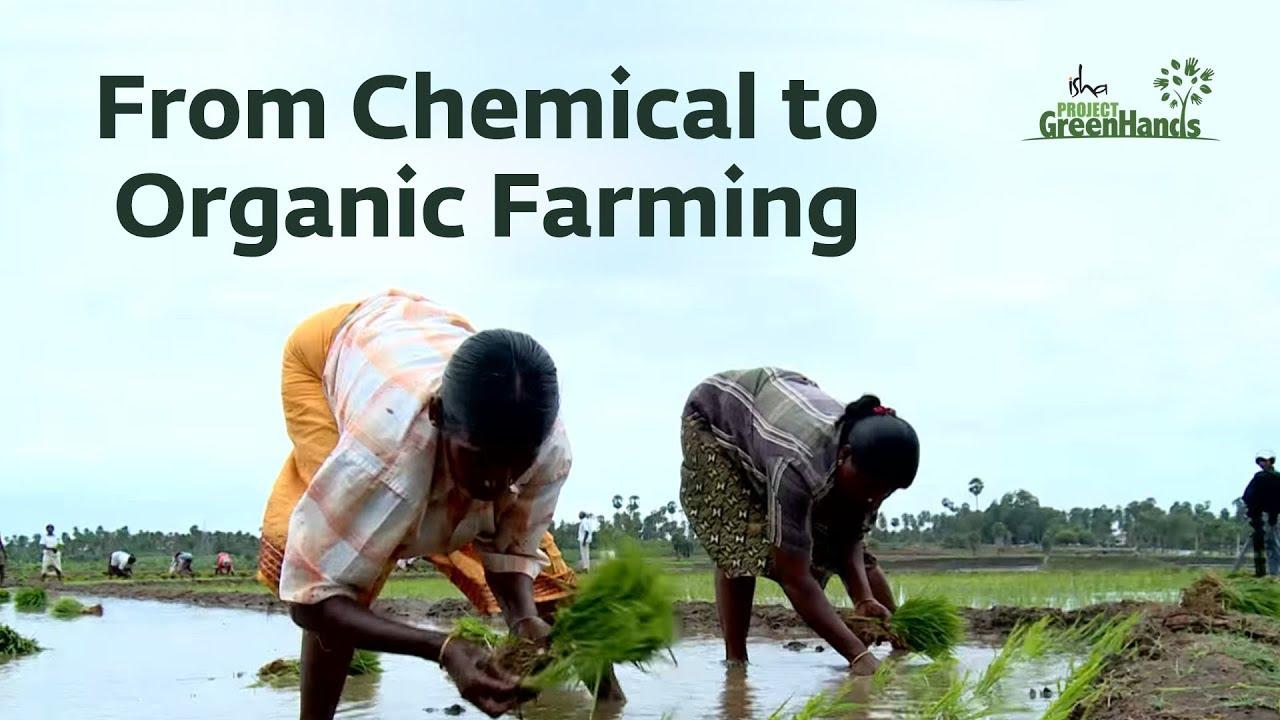 Isha Agro Movement - Chemical-Free Farming