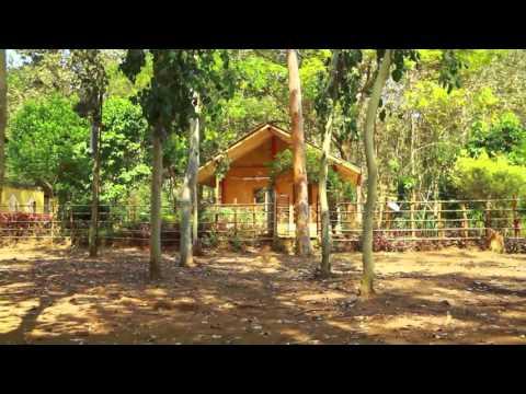 Maredumilli Eco Tourism Andhra Pradesh