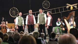 """Musikanten-Treffen Stallhofen """"Ambrosi-Quartett"""" 11.9.2015-25"""