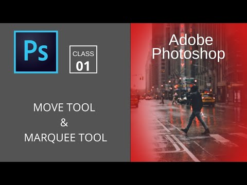 Adobe Photoshop: Basic Selections (part-1) | Move Tool | Marquee Tool