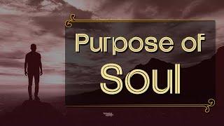 Purpose of Soul