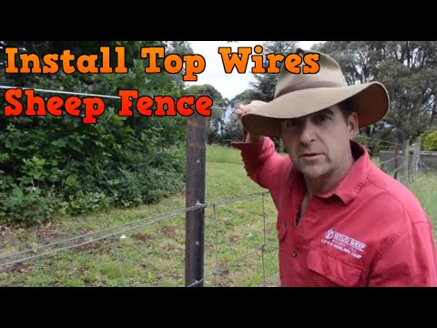 How To Install Top Wires On Sheep Fence