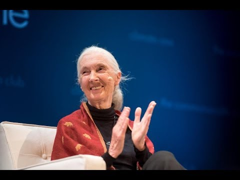 Climate One TV: Dr. Jane Goodall