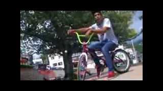 ARTIC - Silvania Riders