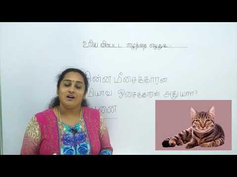 Learn Tamil | தமிழ் எழுத்துப்பயிற்சி | Tamil Activity for Kids | How to write Tamil