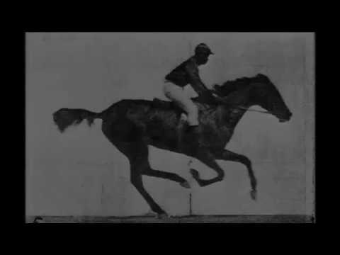 Alamo Drafthouse and Kodak | Reel Film Day
