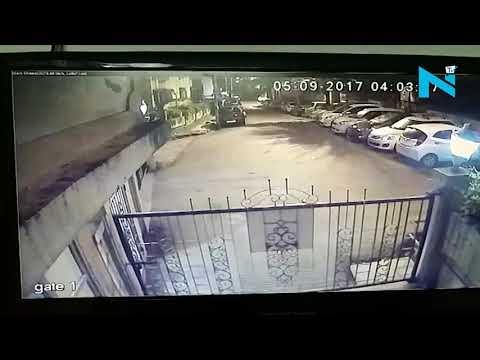 On Cam: Leopard hunts its prey outside Mumbai housing society