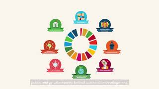 Financing the Sustainable Development Goals: Together we can do more