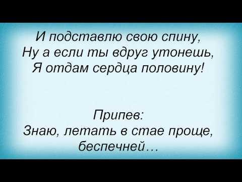 Клип Год Змеи - Стая