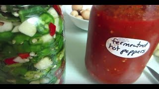 Quick & Easy Fermented (Probiotic) Hot Peppers & Sauce