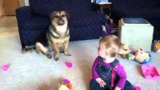 Мыльные пузыри, собака и малыш
