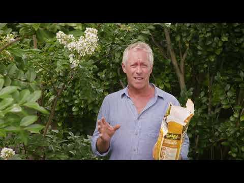 The Garden Gurus – Preparing for Autumn Planting